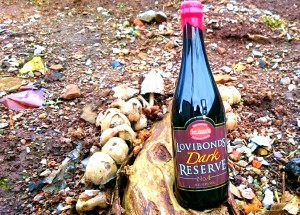 Lovibonds Dark Reserve No 4 beer